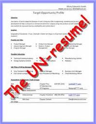 Resume Sample Resume For Undp Jobs resume un jobs frizzigame sample  frizzigame