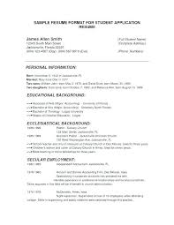 Christian Social Worker Sample Resume Mesmerizing Art Worker Sample Resume Colbroco