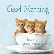 Weekend Good Morning Quotes Best of Cute Kittens Weekend Quotes Weekend Image 24 PicturesCafe