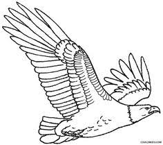 Small Picture Printable Bald Eagle Coloring Pages For Kids Cool2bKids Birds