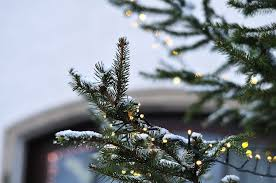 What options are there for <b>smart</b>, <b>customizable</b> outdoor holiday lights ...
