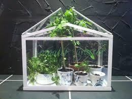 wonderful ikea mini greenhouse ikea mini greenhouse royal copenhagen cups  with ikea greenhouse.