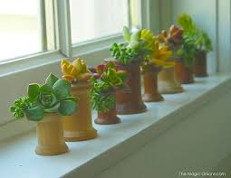 indoor gardening ideas. VIEW IN GALLERY Small And Stylish DIY Indoor Planters Gardening Ideas E