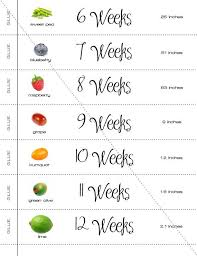 22 Extraordinary Pregnancy Week Size Chart