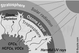 ozone layer depletion and global warming ozone layer depletion