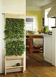 Small Picture Herb Garden Indoor Indoor Herb Hero Kitchen Herb Garden Living