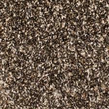 Shop Carpet & Carpet Tile at Lowes