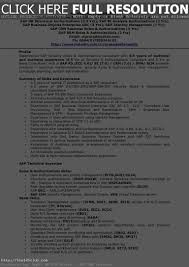Generous Sap Bw Bo Resume Pictures Inspiration Example Resume