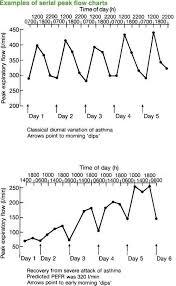 Asthma Peak Flow Diary Health Saying