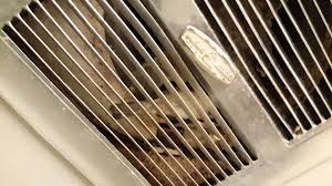 Bird Flies Into Bathroom Through Exhaust Fan Vent YouTube - Bathroom venting into attic