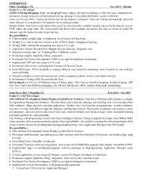 Download Python Developer Resume