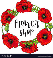 poppy template red poppy flower blossom blooming template vector image