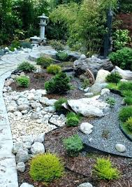 oriental garden supply oriental garden supply oriental garden supply conifer order google search oriental garden supply