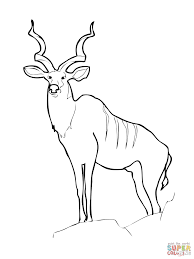 Small Picture Greater Kudu coloring pages Free Coloring Pages