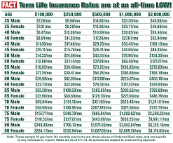 term life insurance rate quotes fair whole life insurance quote homean quotes