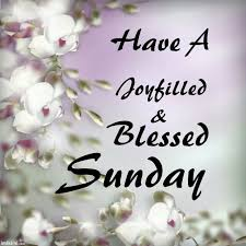 Blessed Sunday Quotes Simple Happy Blessed Sunday Quote Quote Number 48 Picture Quotes