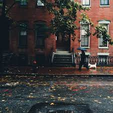 Fall in Boston | Places, Beautiful world, Beautiful places