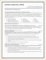 Examples Of Branding Statements For A Resume Personal Branding Statement Resume Examples 9 Personal Brand