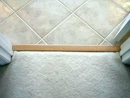 door threshold strips tile doorway transition floor image of wood carpet laminate to ti