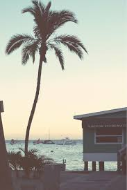 palm trees tumblr vertical. Just Relax And Let Go Photography Summer Sunset Beach Ocean Scenic Palm Trees Pretty Boats Tumblr Vertical G