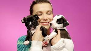 Millie Bobby Brown Plays With Puppies ...