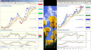 Indian Stocks Glance At Intraday Charts 06 03 2014