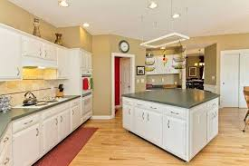 cost to refinish kitchen cabinets or replacing kitchen cabinet inside cabinet painting cost renovation decoration professional