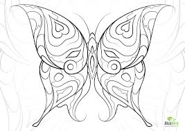 Small Picture Heart Butterfly adult coloring book pages