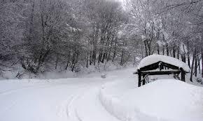 Αποτέλεσμα εικόνας για χιονια κυψελες