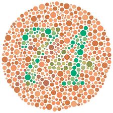 Color Blind Test | Test Color Vision by Ishihara Test for Colorblindness