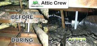 air duct replacement diy air duct replacement rodent proofing control attic clean up crawl space cleaning