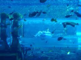 jimmy on the water slide underwater atlantis29 underwater