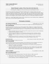Real Estate Agent Resume New Real Estate Agent Realtor Resume