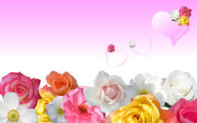 love roses and hearts wallpapers. Perfect Roses 1920_1200 Intended Love Roses And Hearts Wallpapers A