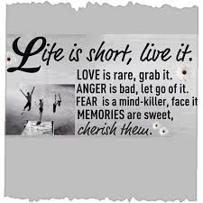 Live Life To The Fullest Quotes Simple Living Life To The Fullest Essay Live Life To The Fullest Quotes
