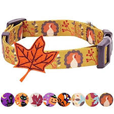 Petco Dog Collar Size Chart Blueberry Pet 10 Patterns Fall Halloween Thanksgiving Dog Collars Collar Covers