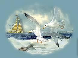 seagulls in flight seagulls in flight art beach bird ocean