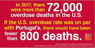 Image result for drug legalization success in portugal