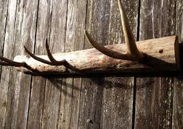 How To Make A Deer Antler Coat Rack Beauteous Rustic Deer Antler Coat Rack For Him Wall Decor Rustic Home Decor