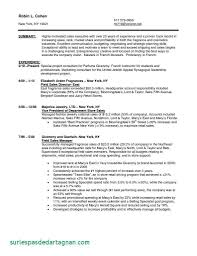 Resume Letters Things To Include In A Resume Objective For Retail