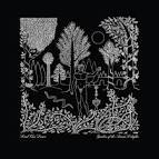 Garden of the Arcane Delights/Peel Sessions