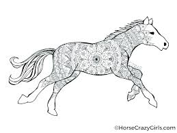 Horse Pictures To Color Horse Fighting Horses Coloring Page Arabian