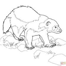 Small Picture Coloring Pages Wolverine Animals Archives Mente Beta Most