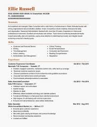 Sales Associate Resume Examples Awesome Sales Associate Resume Free