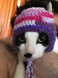 Cat Hat Crochet Pattern Unique Crochet Hats For Cats 48 Crochet Patterns For Cat Hats