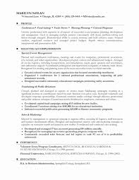 Free Combination Resume Template 2017 New Examples Career Change