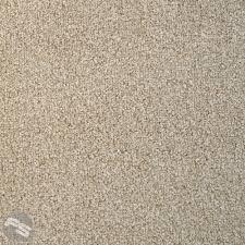 brown carpet floor. Brown Carpet Floor