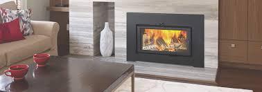 fireplace fresh modern wood burning fireplace insert home decor interior exterior creative on home interior