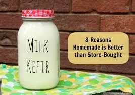 kefir milk. milk kefir: 8 reasons homemade is better than store-bought kefir
