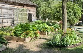 10 smart ways to garden on a budget